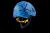 Grivel: Duetto  каска альп/ски